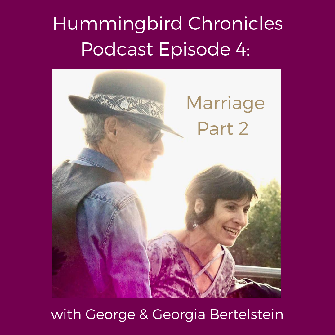 Hummingbird Chronicles Podcast Episode 4