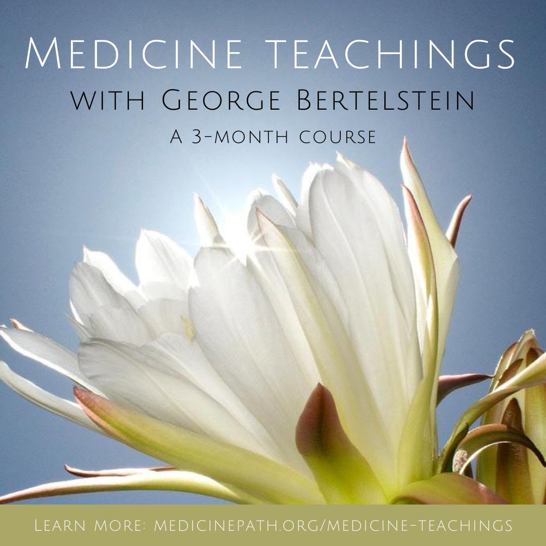 medicine teachings